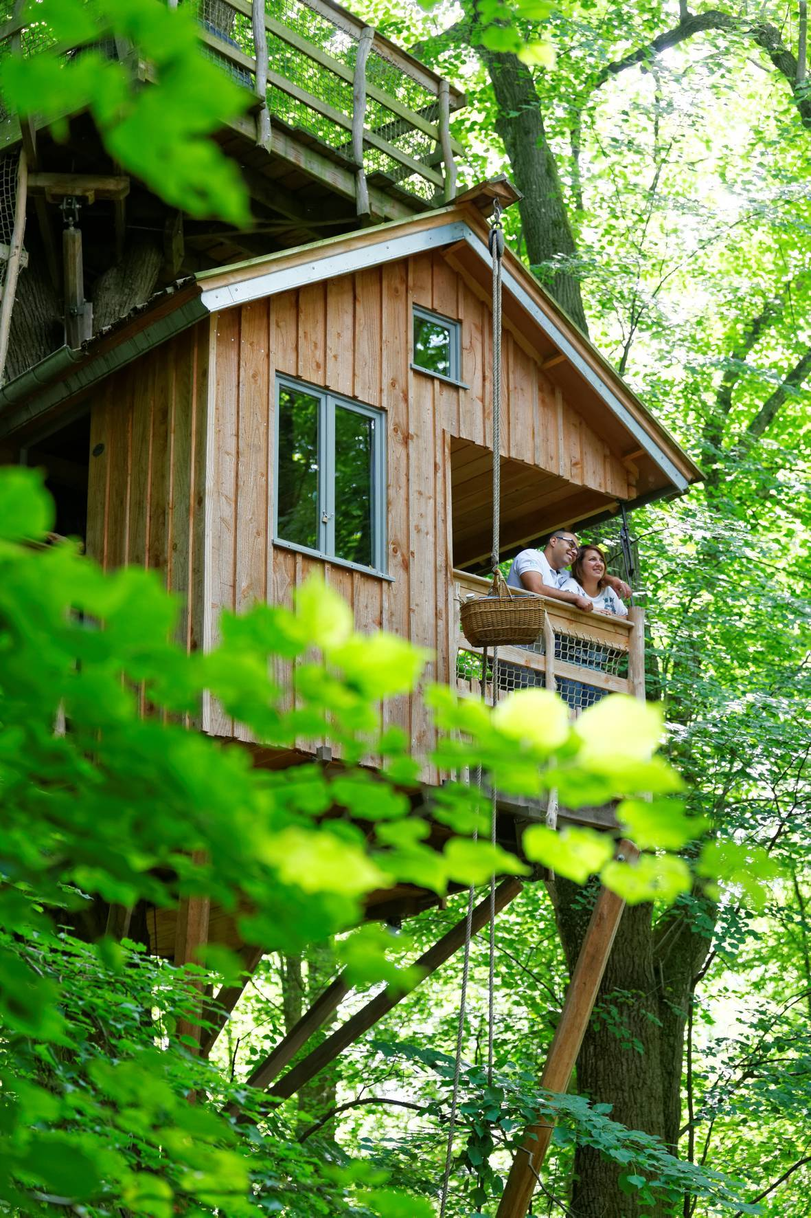 Cabane En Bois Dans Les Arbres : le mouvement, dans les sensations, alors choississez les plum'arbres